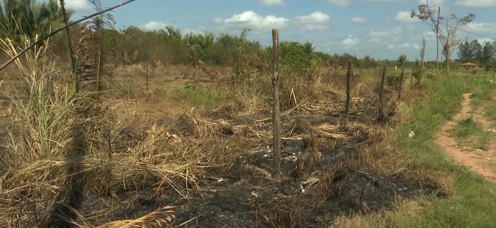 Terreno de propriedade particular é alvo constante de invasores, que estão usando o fogo para limpar a área que pretendem invadir.  — Foto: Reprodução/ TV Mirante