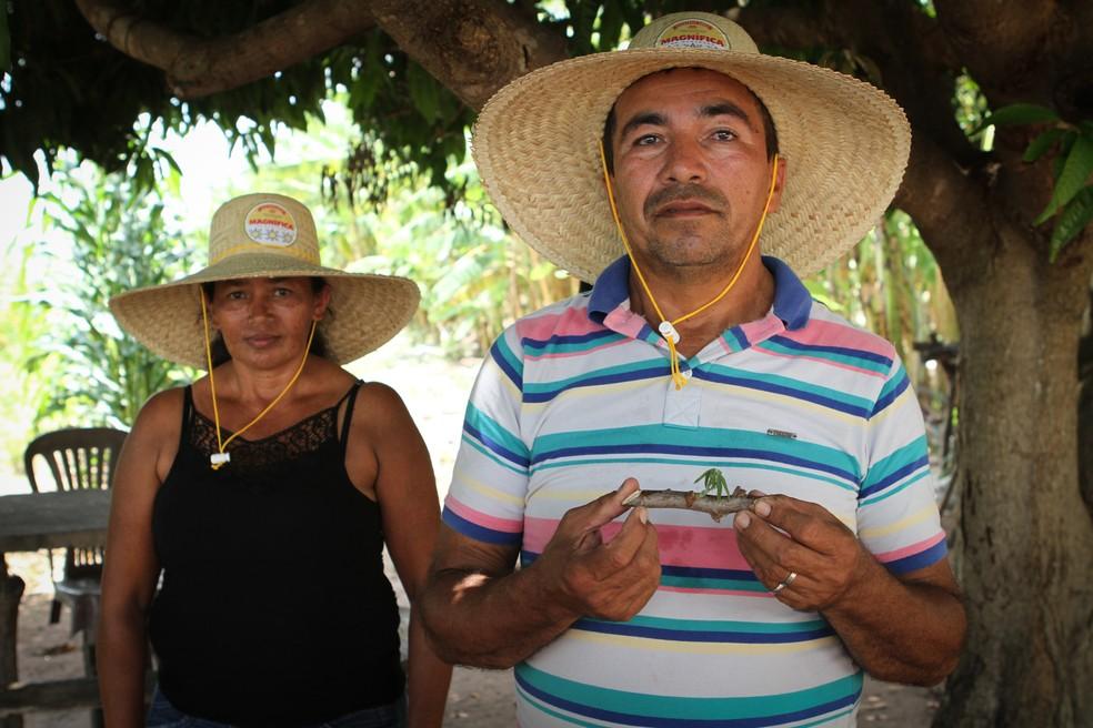 Lourival dos Santos Brandão e sua esposa Suely. Ele trabalha na colheita para a cerveja Magnífica (MA) — Foto: Ambev/Divulgação