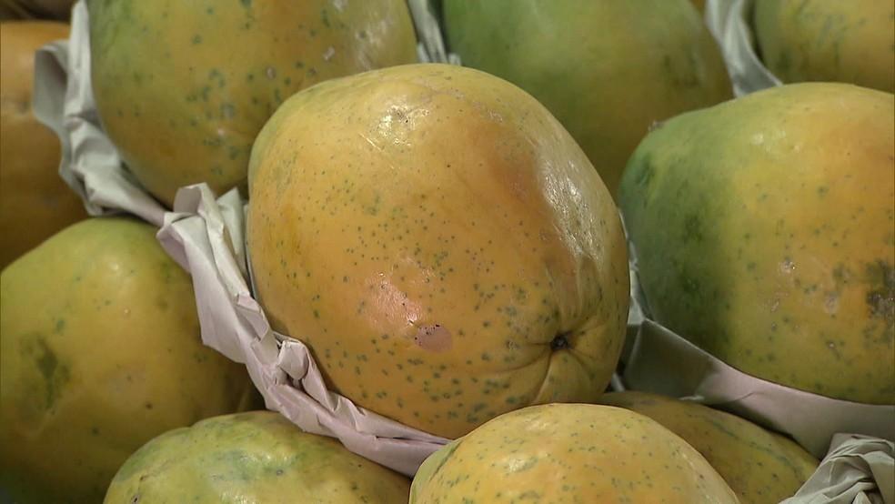 Preço de frutas e verduras aumentou nos primeiros meses do ano — Foto: TV Globo/Reprodução