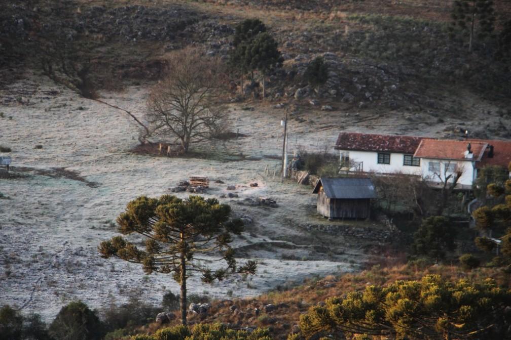 Paisagem em São Joaquim  — Foto: Mycchel Legnaghi/Divulgação