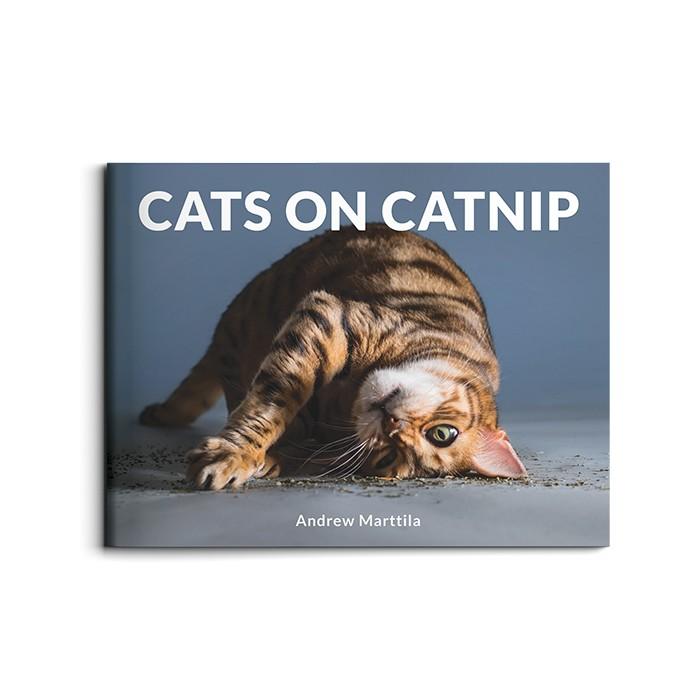Livro Cats on Catnip (Foto: Cats on catnip, Andrew Marttila, Running Press, US$ 16 (importado), 128 págs. (Foto: divulgação))