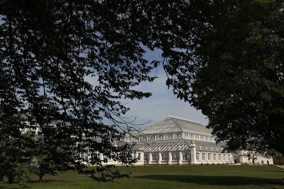 Temperate House (Foto: Adrian Dennis/AFP)