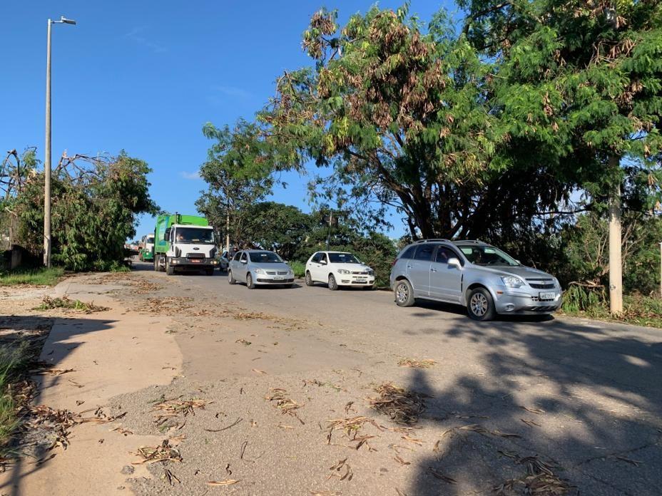 Queda de árvores provoca lentidão na Região Oeste de BH