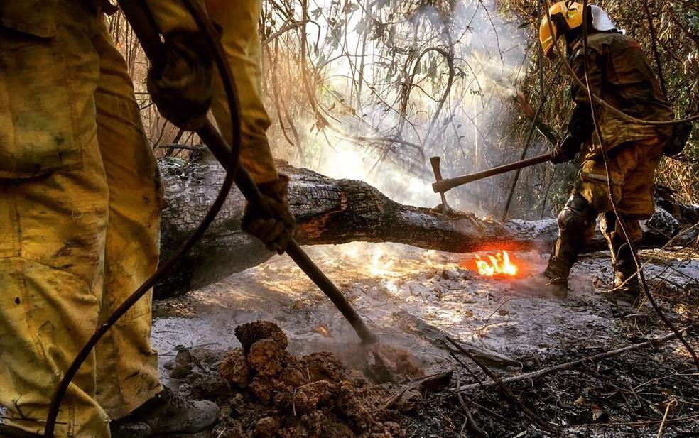 Bombeiros combatem fogo na Serra do Rola Moça nesta sexta-feira. (Foto: Corpo de Bombeiros/Divulgação)