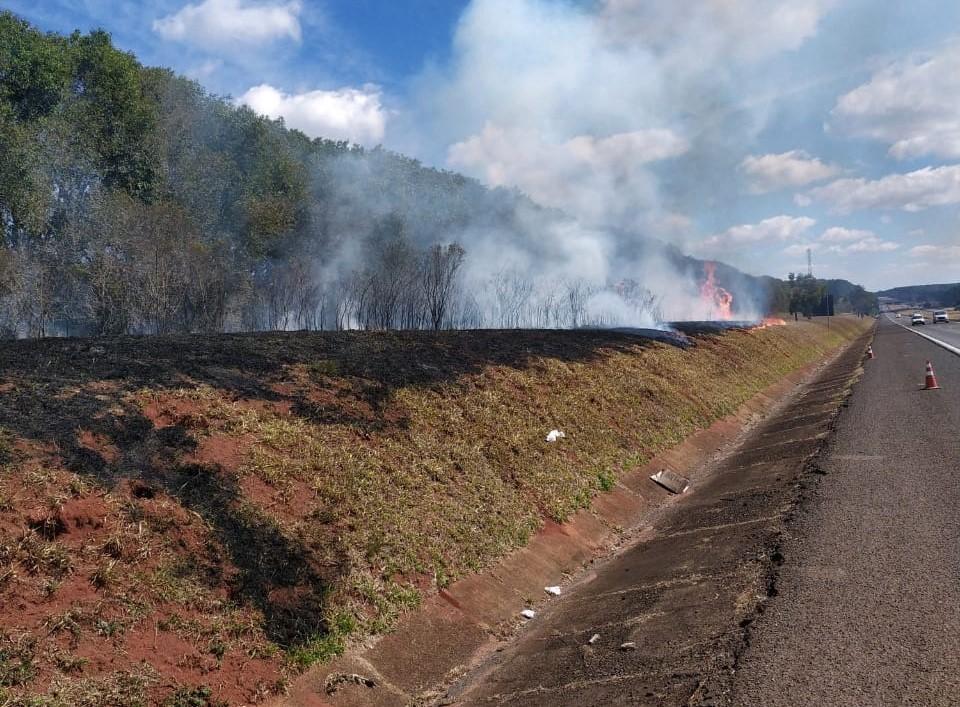 Homem é preso suspeito de atear fogo em vegetação às margens de rodovia em Itatinga
