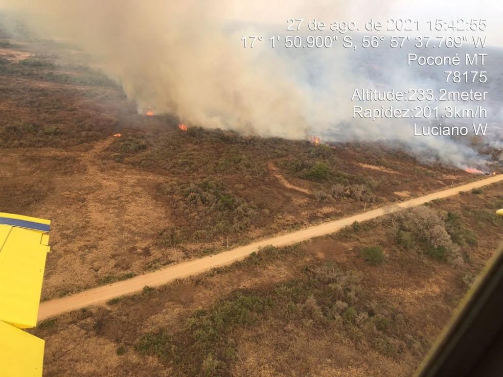 Bombeiros flagraram criminosos tentando atear fogo em ponte no Pantanal em Mato Grosso — Foto: Corpo de Bombeiros de Mato Grosso