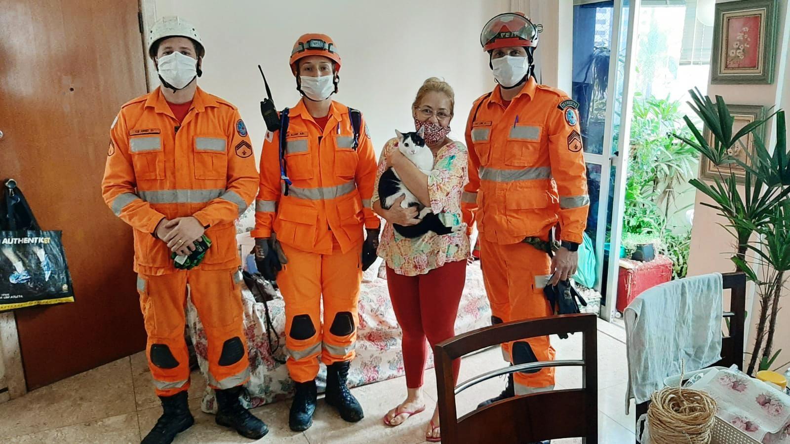 Bombeiros resgatam gatinha que ficou presa durante 5 horas dentro do banheiro, na Região da Pampulha, em Belo Horizonte
