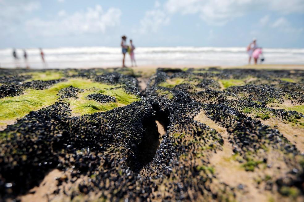 Manchas de óleo na praia Sítio do Conde, na Bahia — Foto: REUTERS/Adriano Machado