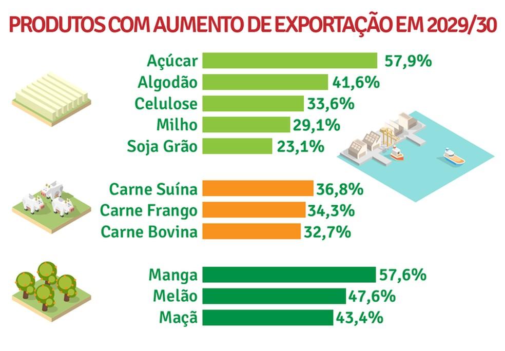 Previsão do governo federal para as exportações agropecuárias em 2030 — Foto: Ministério da Agricultura/Divulgação