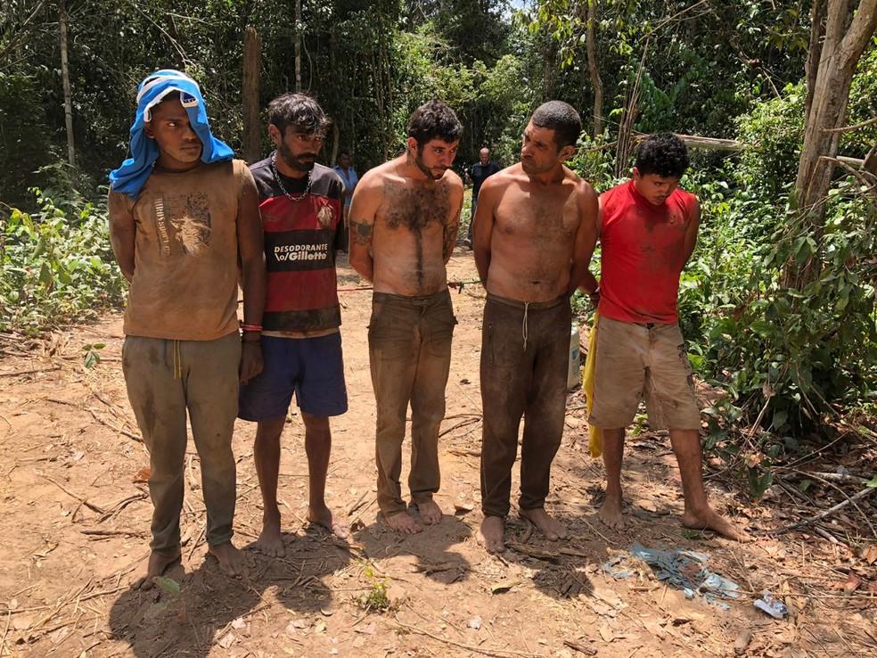Parte dos madeireiros presos pelo grupo Guardiões da Floresta em Amarante, no Maranhão — Foto: Mídia Índia