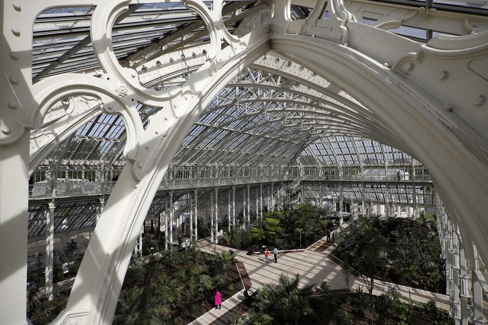 """""""Temperate House"""" no Jardim Botânico Real de Kew, no oeste de Londres, permaneceu fechada durante cinco anos (Foto: Adrian Dennis/AFP)"""