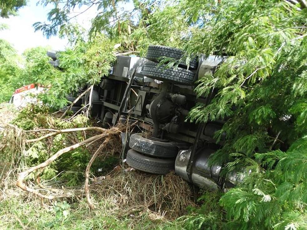 Veículo tombou e bateu em árvore na BR-116  (Foto: Silvan Alves/Divulgação)
