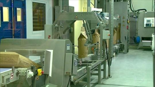 Indústria se prepara para vender leite em pó e queijos à China