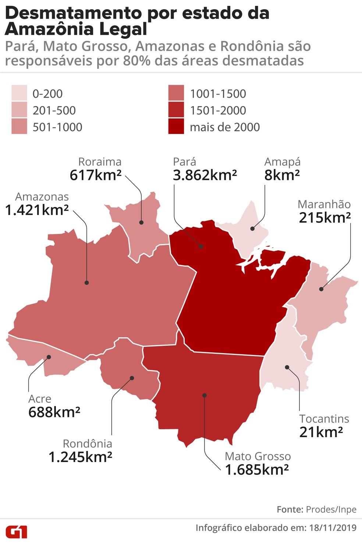 Área de desmatamento nos estados, segundo dados do Prodes em 2019 (agosto/18 - julho/19) — Foto: Rodrigo Sanches/Arte G1