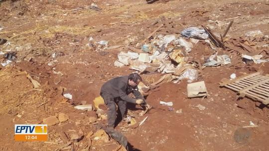 Polícia investiga descarte irregular de cheques e prontuários da Santa Casa no aterro de Terra Roxa, SP