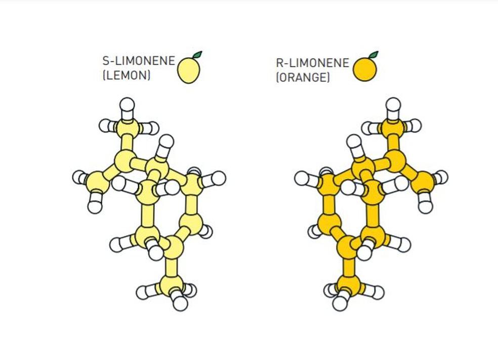 Na imagem, ambas as moléculas são do limoneno. Mas, na forma com que ela se apresenta à esquerda, tem cheiro de limão. Já a forma da direita tem cheiro de laranja. Os átomos são os mesmos, mas a organização deles dentro da molécula é diferente. — Foto: Reprodução/The Nobel Prize