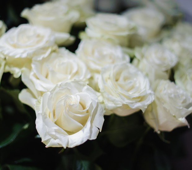 Rosas brancas (Foto: Thinkstock Photos)
