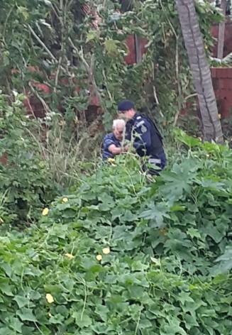 Idoso fica preso em matagal por 24 horas e é resgatado por guardas que patrulhavam a área, em Fortaleza