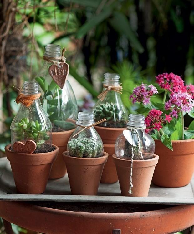 9-ideias-de-decoracao-com-plantas-para-o-dia-das-maes-redomas-de-garrafas-pet-para-vasos-com-suculentas.jpg (Foto: Pinterest/Reprodução)
