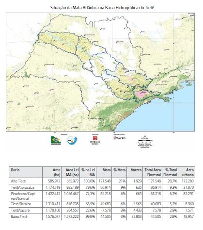 Situação da Mata Atlântica na Bacia Hidrográfica do Rio Tietê (Foto: Divulgação/SOS Mata Atlântica)