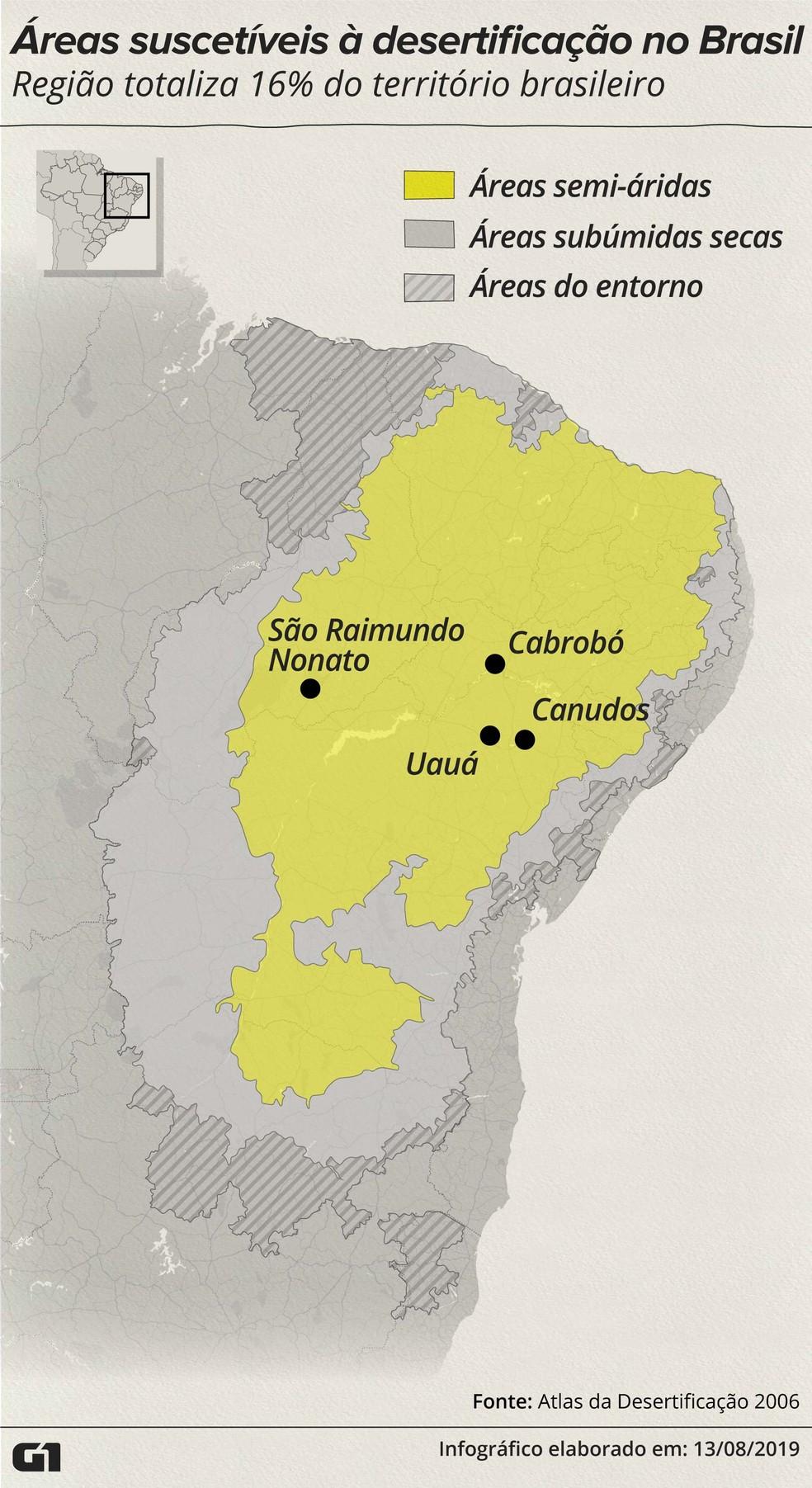 Ampla área do semiárido brasileiro está suscetível ao processo de desertificação — Foto: Rodrigo Sanches/G1