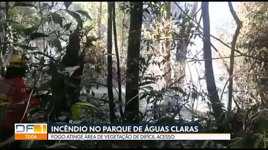 Bombeiros combatem incêndio no Parque de Águas Claras