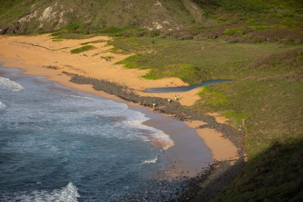 Voluntárias do ICMBio chegam à Praia do Leão, em Fernando de Noronha, para aprender sobre o trabalho no local — Foto: Fábio Tito/G1