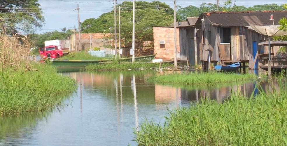Nível atual do Mamoré é de 11,64 metros, mais de meio metro acima do esperado (Foto: Rede Amazônica / reprodução )