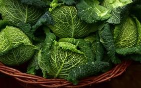 5 hortaliças verdes fáceis de cultivar em casa