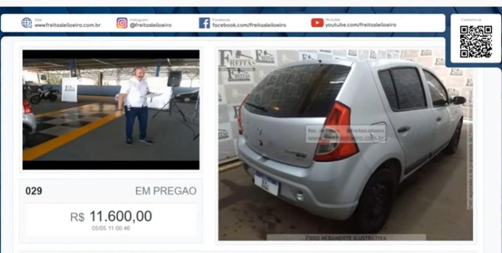 Leilão online liderado por Freitas.  — Foto: Reprodução
