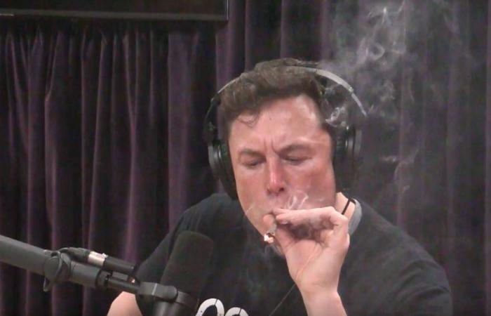 Elon Musk  (Foto: Reprodução/Joe Rogan YouTube)