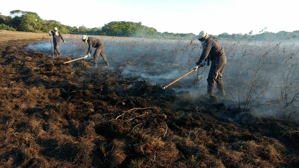 Equipes trabalham para controlar chamas em Trancoso — Foto: Divulgação/Corpo de Bombeiros