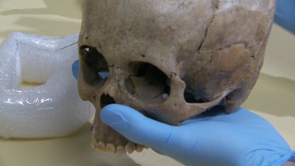 Crânio da indígena foi encontrado no Agreste de Pernambuco — Foto: Reprodução/TV Globo