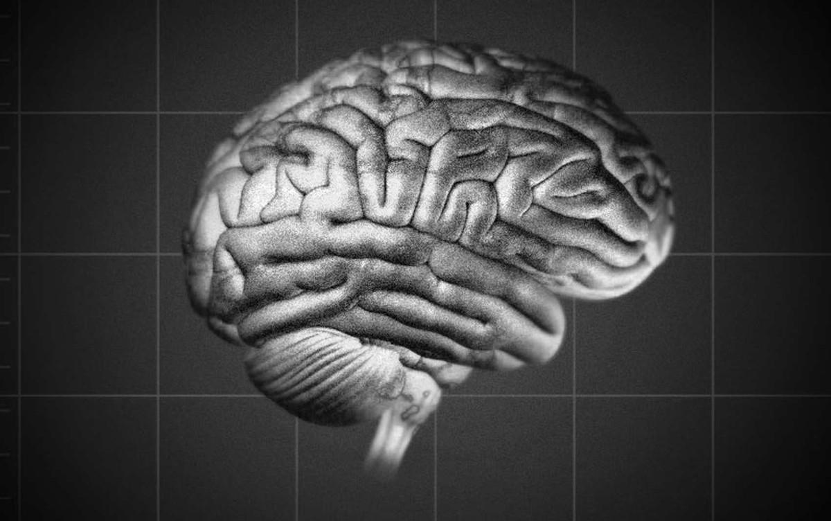 Quatro maneiras como a pobreza pode afetar o cérebro
