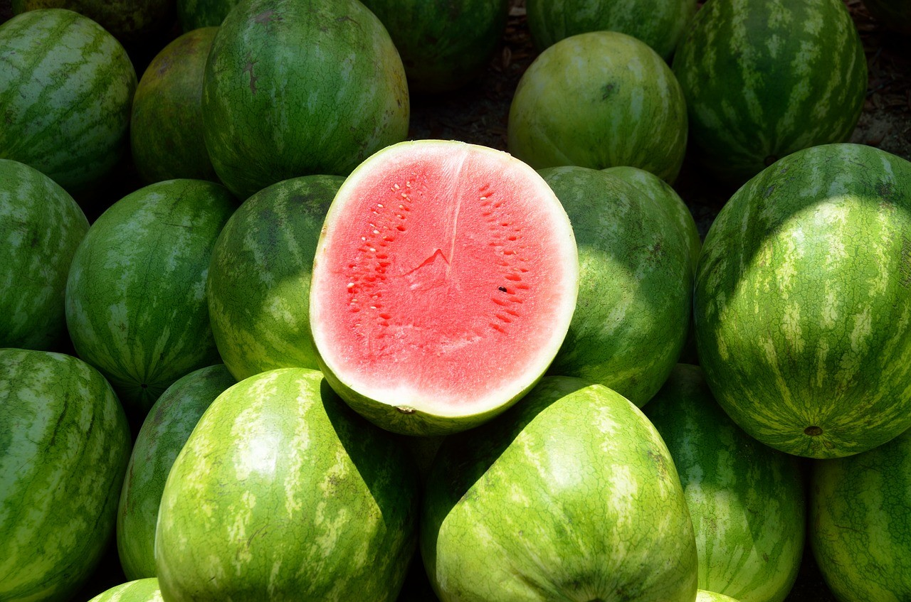 como-plantar-melancia (Foto: Pixabay)