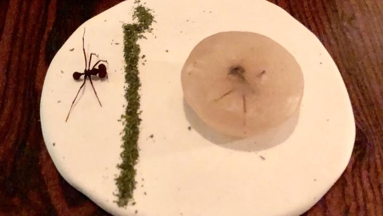 formiga-comida-prato-atala-dom (Foto: Bruno Blecher/Ed.Globo)