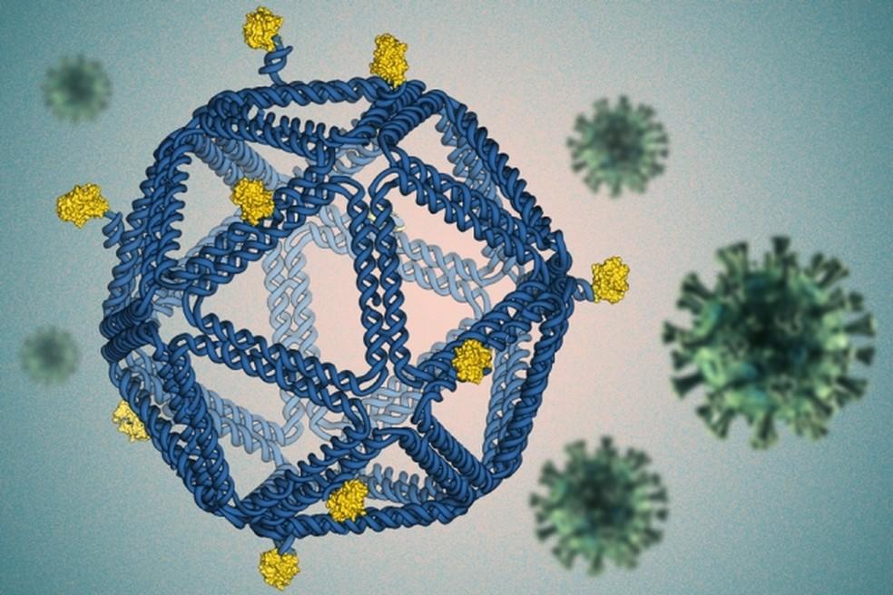 'Origami de DNA' para o Sars CoV-2  — Foto: MIT News