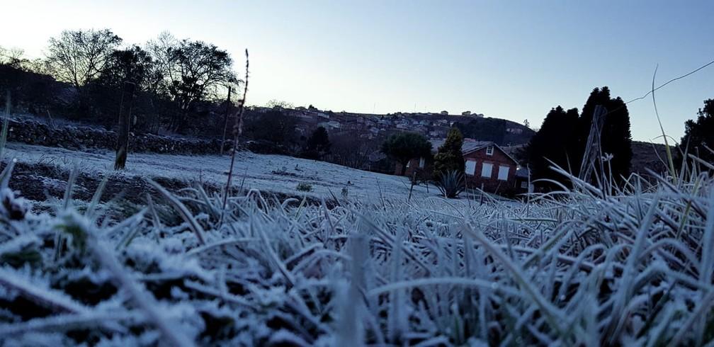 Fina camada de geada em São Joaquim; manhã foi de frio com mínima de -4,7°C (Foto: Mycchel Hudsonn Legnaghi/São Joaquim Online)