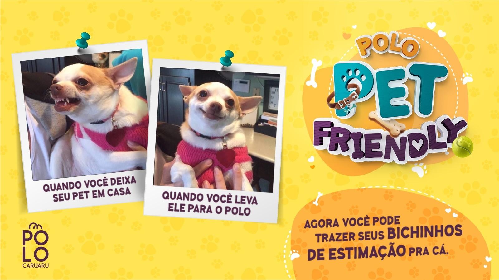 Polo Caruaru abre as portas para os animais de estimação - Notícias - Plantão Diário