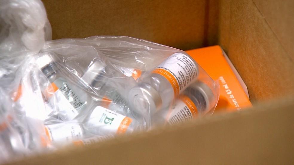 Mais um lote da vacina CoronaVac é entregue em Rondônia — Foto: Rede Amazônica/Reprodução