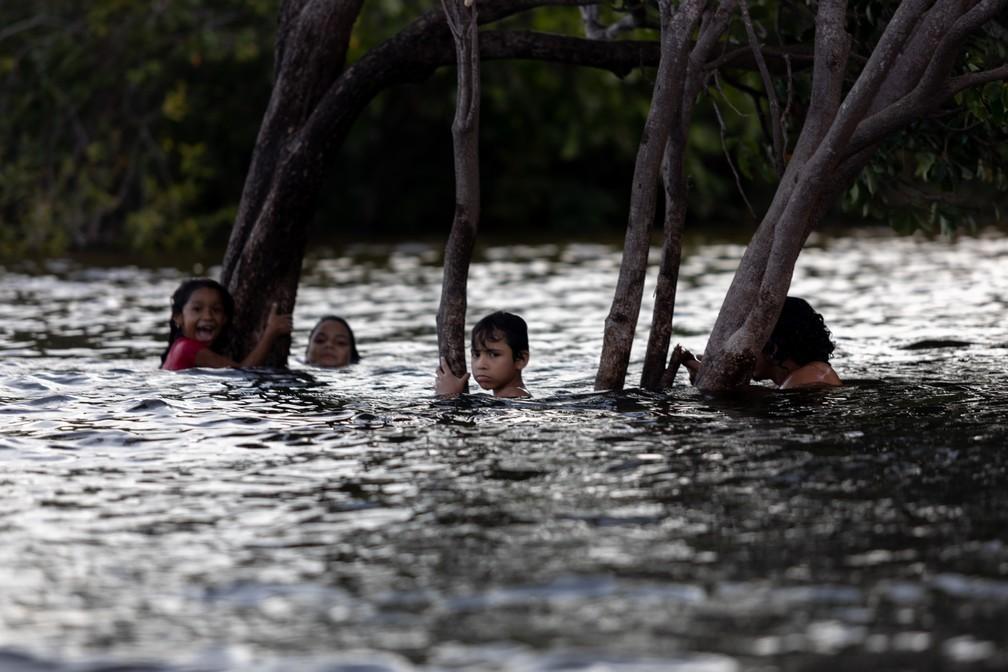 Crianças se apoiam nos galhos de árvores enquanto nadam no Rio Tapajós perto de Alter do Chão (PA) — Foto: Marcelo Brandt/G1