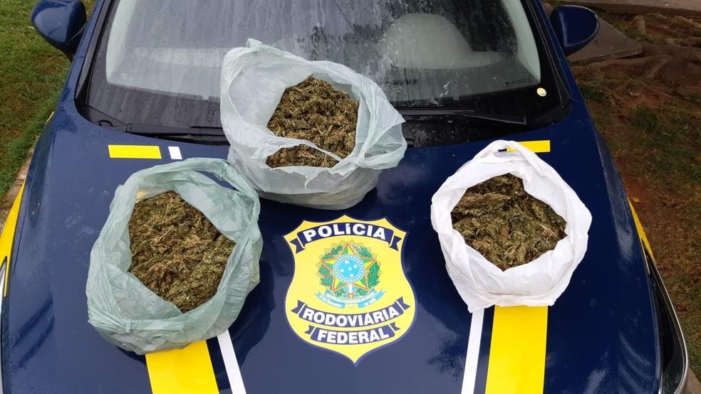 Drogas foram apreendidas em São Caetano — Foto: Reprodução / PRF
