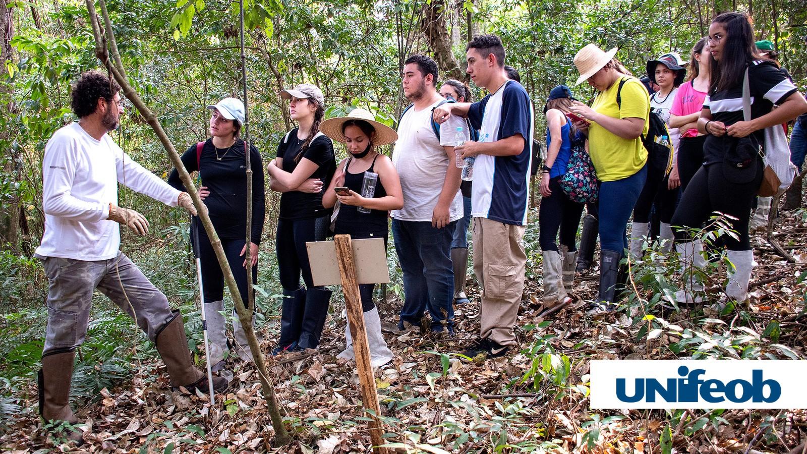 """Trilha ecológica da Unifeob é aula de Biologia """"na prática"""" para estudantes"""