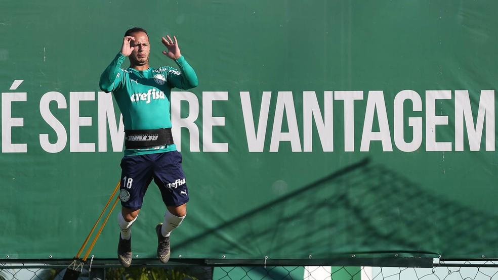 Meio-campista terá contrato estendido até o final de 2020 — Foto: Cesar Greco/Ag Palmeiras