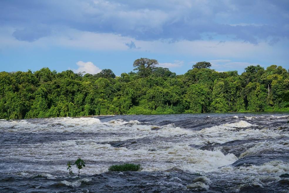 O rio Amazonas é o segundo maior rio do mundo, alimentado por diversos afluentes (Foto: Arquivo TG)