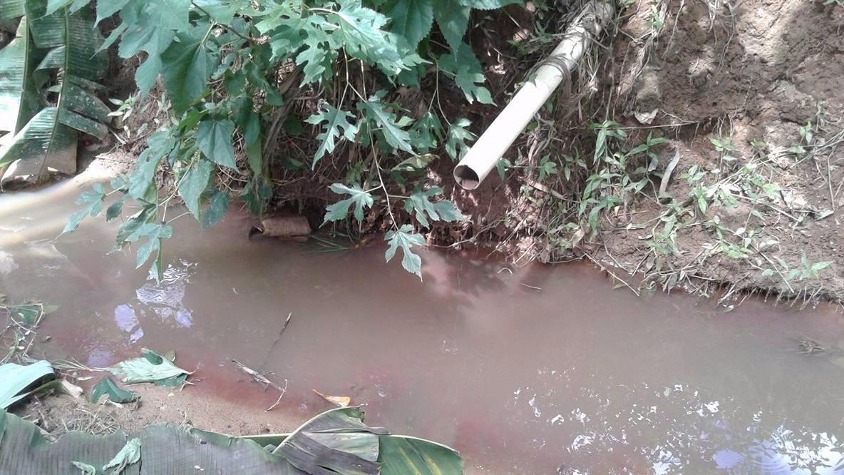Moradores de distrito de Caratinga cobram por saneamento básico
