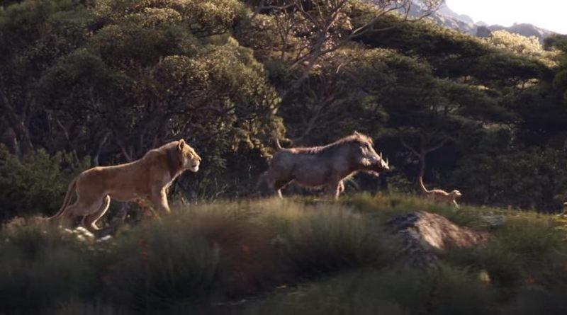 Remake de 'O Rei Leão' estreia em nove salas de cinemas de Boa Vista - Notícias - Plantão Diário
