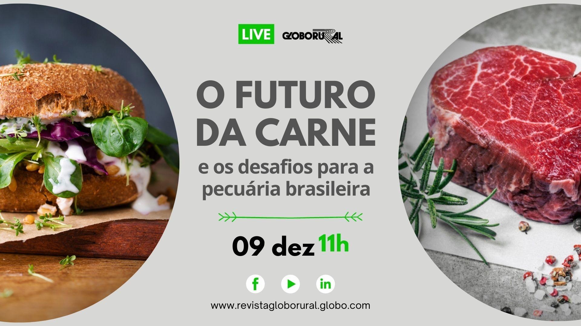 Live sobre o futuro da carne (Foto: Estúdio de Criação)