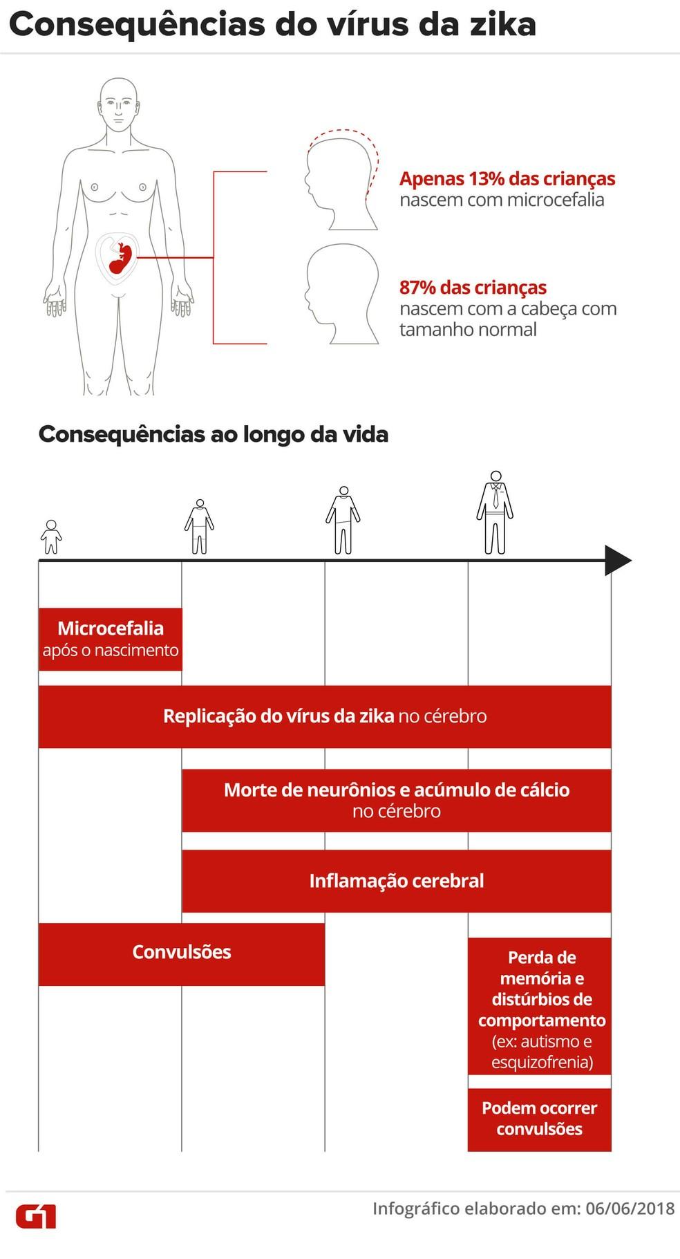 Cientistas começam a tentar prever as consequências do vírus da zika na fase adulta  (Foto: Oliveira Souza et al/Juliane Monteiro/Arte G1)