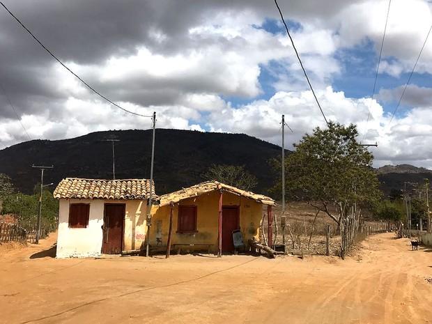 Zona rural de Feira de Santana, na Bahia, sofre com estiagem prolongada (Foto: Alan Tiago Alves/G1)